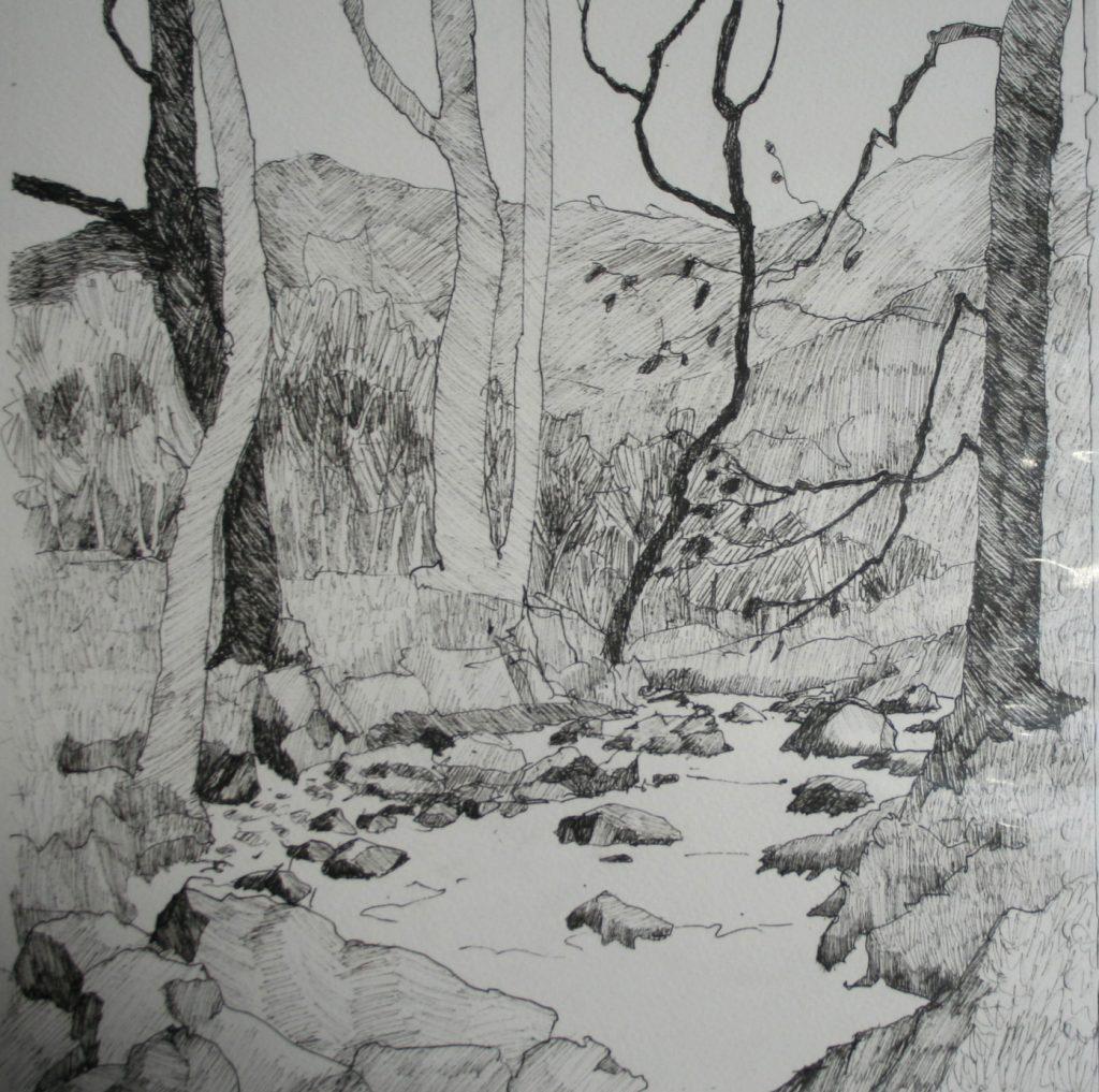 Cumbrian Drawing 1