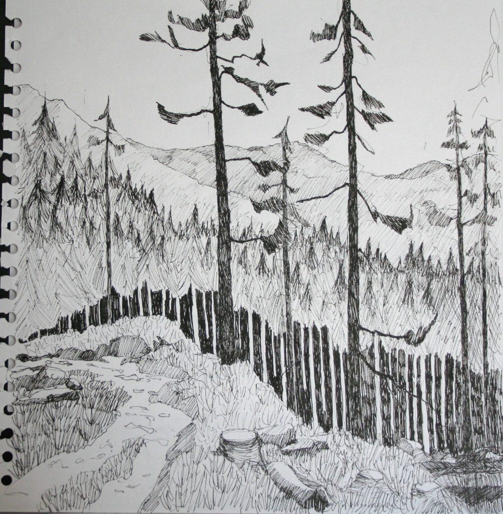 Cumbrian Drawing 3
