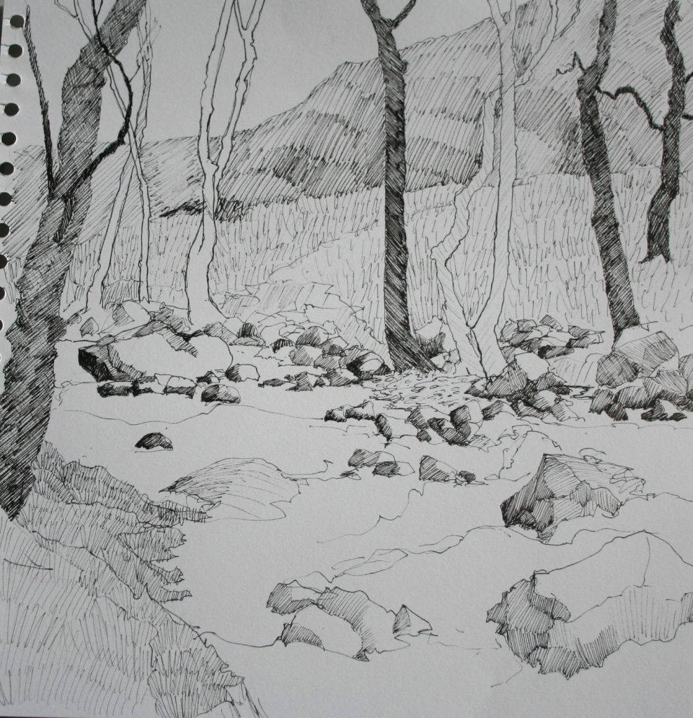 Cumbrian Drawing 5