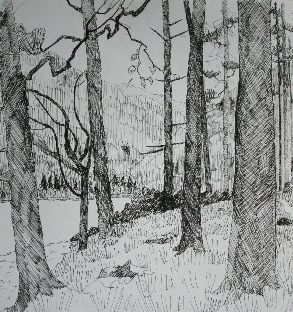 Cumbrian Drawing 7